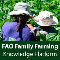 «FAO»